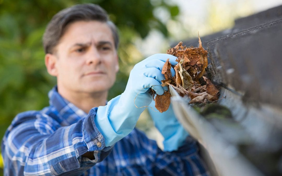 clean the gutters to maintain and protect your home